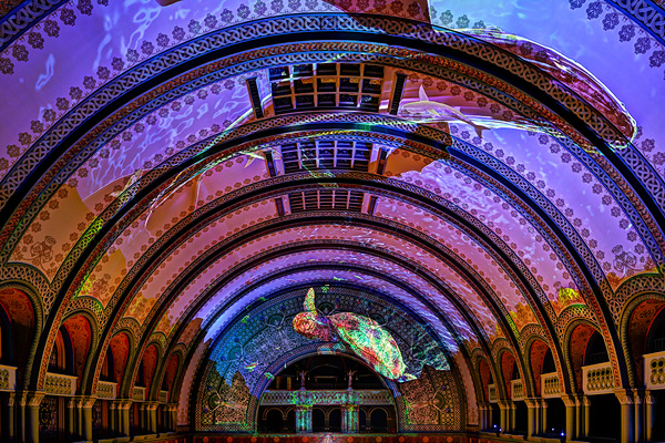 union station whale ocean ceiling photo by Debbie Franke